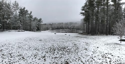 The Grounds in Winter