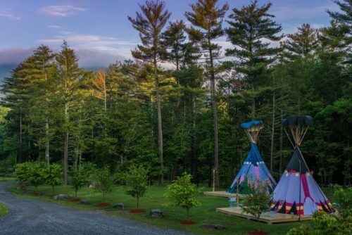 Our Tipis are set in grounds surrounded by nature